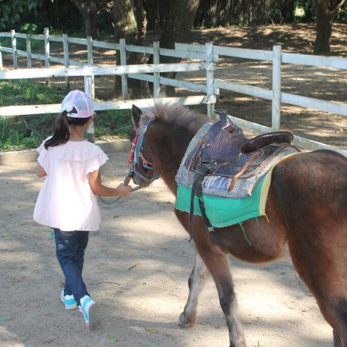 Children Birthday Parties | Pony Parties | Pony Rides | Horse Rides